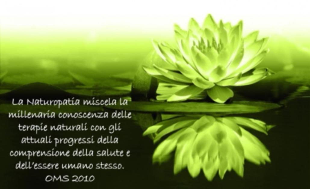 Organizzazione Mondiale Della Sanita Sandra Capogrosso